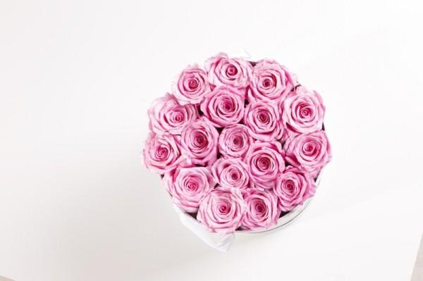 ewige rosen konservieren