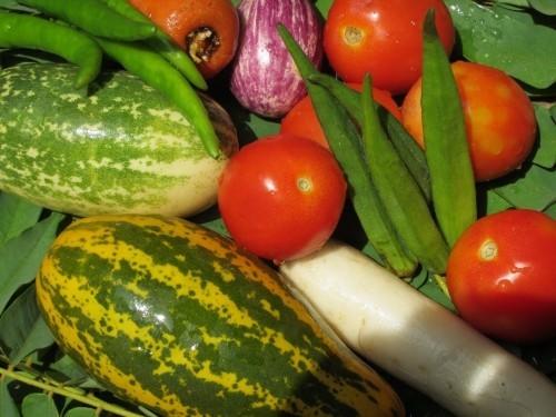gemüse und früchte gesundes essen