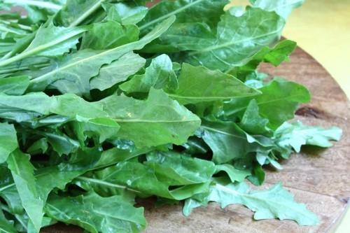grünblatt gemüse gesundes essen