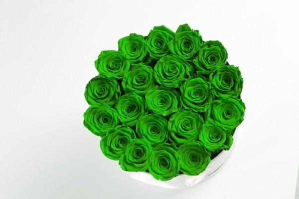 grüne rosen konservieren geschenkidee