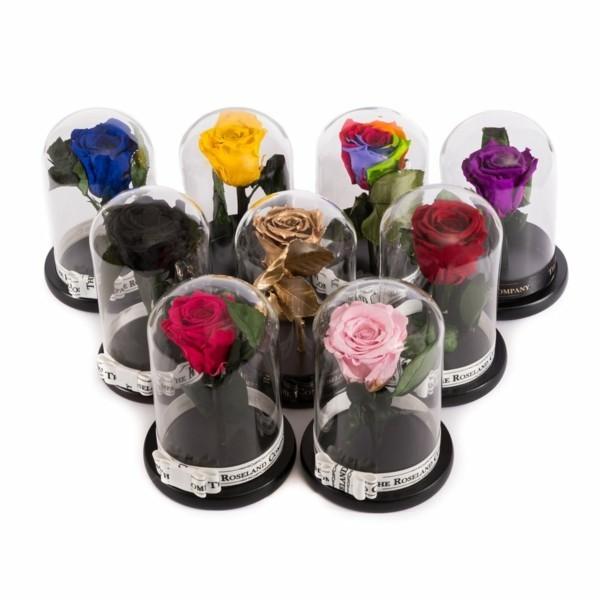 rosen konservieren geschenkideen geburtstag valentinstag