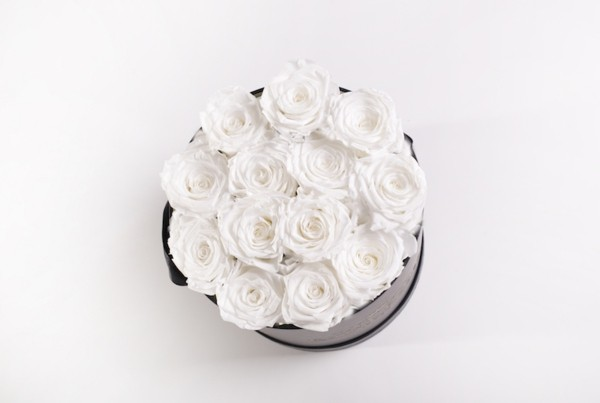 weiße rosen konservieren geschenkbox