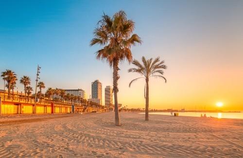Ausgewählte Reiseziele im September Urlaubszeit weiter Strand Palmen bei Sonnenaufgang