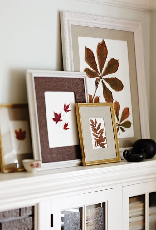 Raumgestaltung Ideen bunte Herbstblätter in Rahmen auf weißem Hintergrund Deko Elemente im Herbst