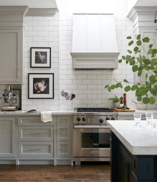 Weiße Küche Wandbilder Zimmerpflanze Raumdetails