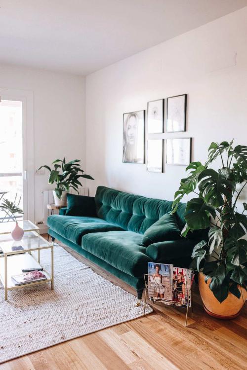 einrichtungsideen für tolles grünes sofa