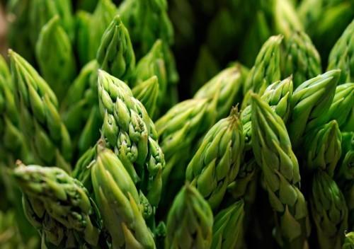 grüne spargel folsäure