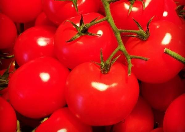 tomaten lecker gesund essen