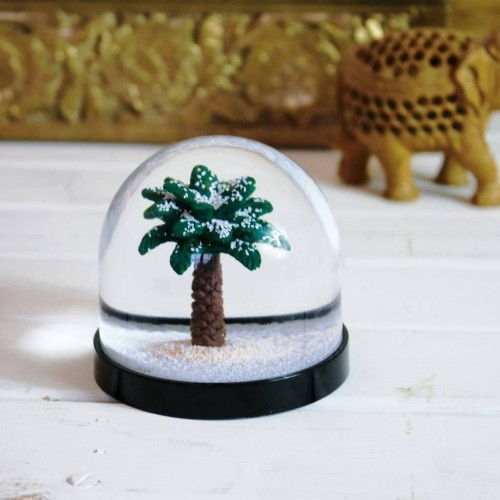 winterharte Palmen schneekugel