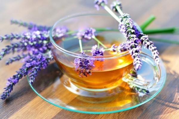 Frische Kräuter Lavendelblüten Lavendeltee gegen Schlafstörungen