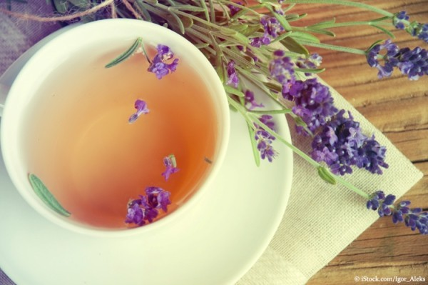 Frische Kräuter Lavendelblüten Lavendeltee