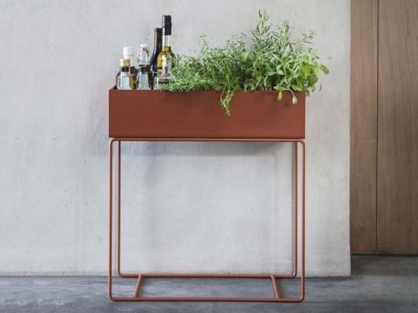 Ideen für Zimmerpflanzen-Deko Getränke und grüne Zimmerpflanzen im Metallkasten