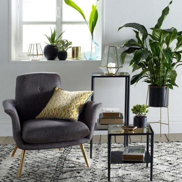 Ideen für Zimmerpflanzen-Deko Topfpflanzen