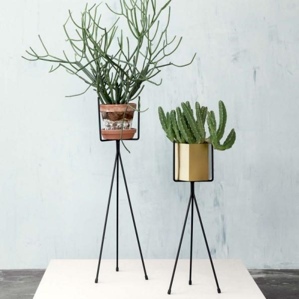 Ideen für Zimmerpflanzen-Deko Trend minimalistisch gestaltete Blumenständer