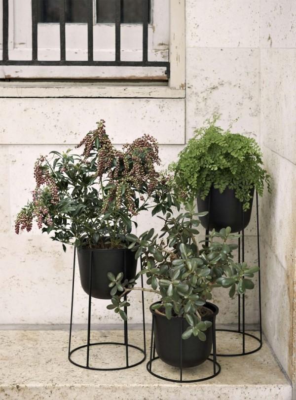 Ideen für Zimmerpflanzen-Deko drei Töpfe mit grünen Pflanzen tolles Arrangement draußen