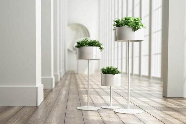 Ideen für Zimmerpflanzen-Deko elegantes Arrangement drei weiße Töpfe mit Zimmerpflanzen
