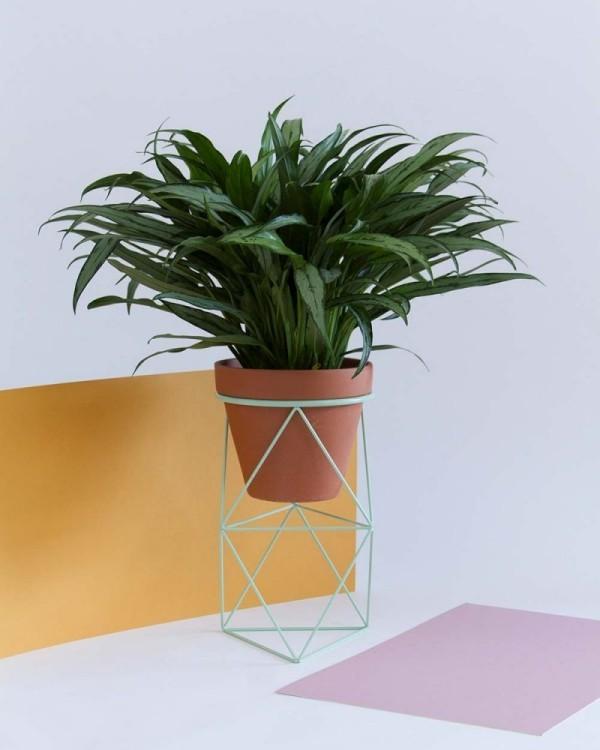 Ideen für Zimmerpflanzen-Deko geometrische Formen sind im Trend