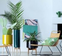 Ideen für Zimmerpflanzen-Deko, die eine neue Ästhetik präsentieren