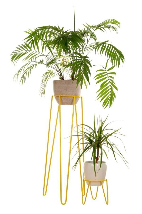 Ideen für Zimmerpflanzen-Deko schöne Töpfe elegante Blumenständer Drachenbaum
