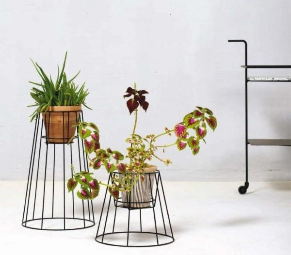 Ideen für Zimmerpflanzen-Deko schönes Arrangement