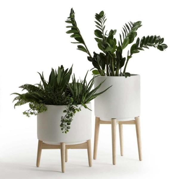 Ideen für Zimmerpflanzen-Deko zwei Töpfe tolle Pflanzkombination Zamioculcas Bogenhanf Farn