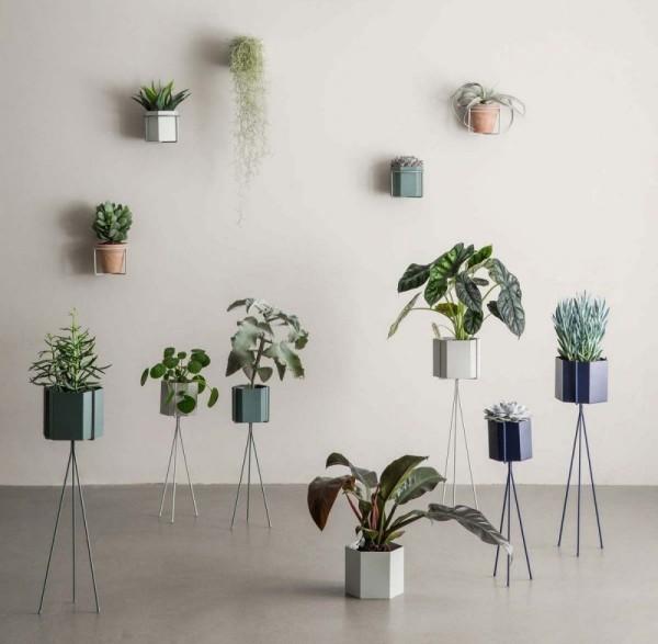 Ideen für Zimmerpflanzen-Deko