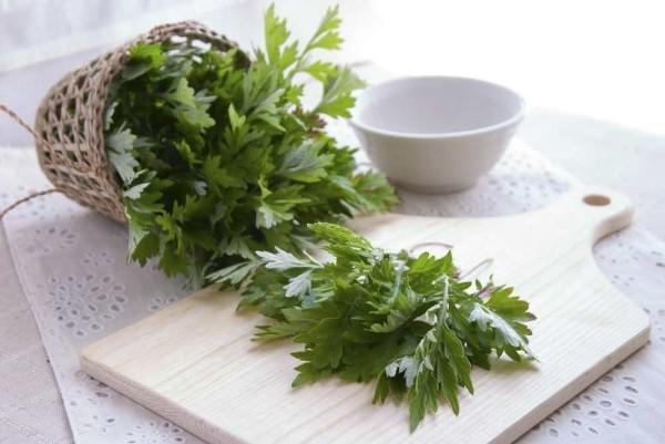 Kräuter frischen Tee zubereiten Beifuß Blüten und Blätter Heilmittel aus der Natur