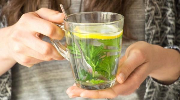 Kräuter warmen Tee aus Beifuß Blätter genießen gesund schlafen