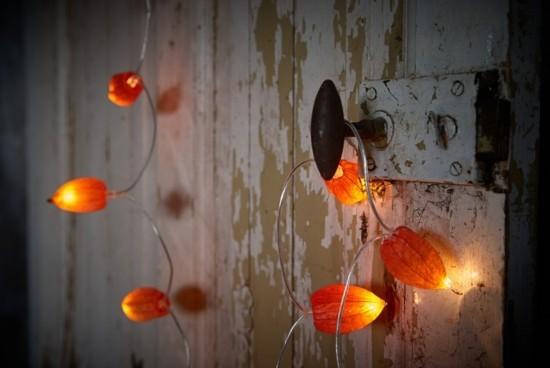 lampionblume physalis lichterkette basteln