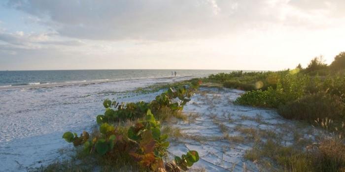 Schönste Strände der Welt Sanibel Island Florida