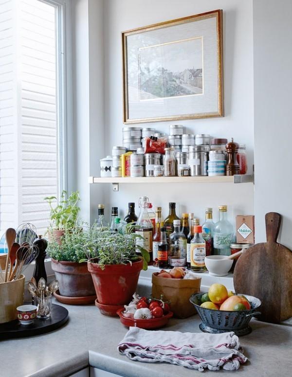 Unterhaltungstipps frische Gewürze in der Küche immer griffbereit haben