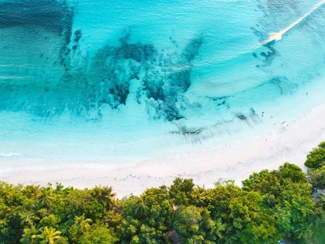 Reiseziele 2019 Seychellen wunderschöner Strand Unterwassersport treiben fotografieren