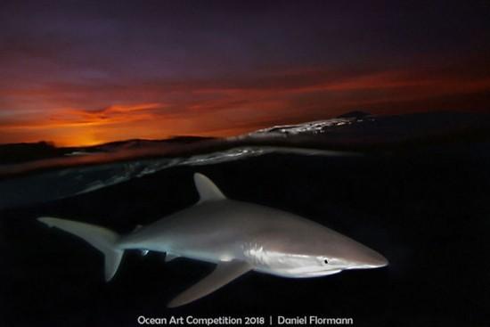 """2018 Ocean Art Contest 6. Platz Daniel Flormann """"Silky Sunset"""", Seidenhei"""