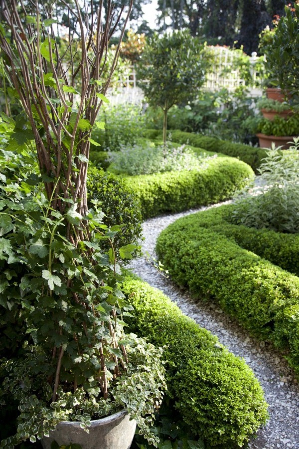Gartengestaltung Ideen Gartenweg von Buchsbaum umrahmt führt ins üppige Grün
