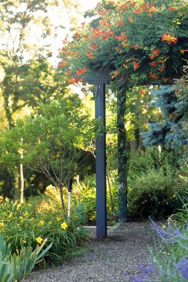Gartengestaltung Ideen Laube Hauseingang bewachsen schöne Blüten