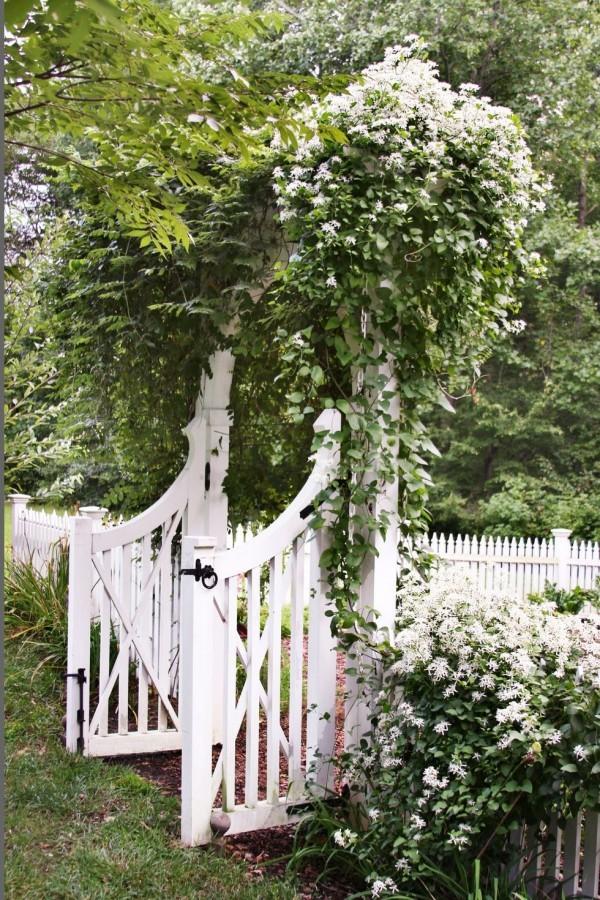 Gartengestaltung Ideen weiße Clematis weißes Gartentor Zaun aus Holz