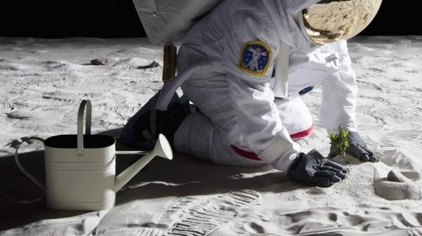 Großer Schritt für die Menschheit Erste Pflanzen keimen auf der Mondrückseite besiedler pflanzt pflanze auf dem mond