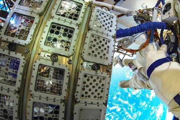 Großer Schritt für die Menschheit Erste Pflanzen keimen auf der Mondrückseite raumstation erste versuche
