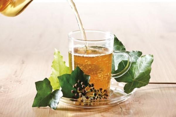 Kräuter gegen Husten Efeu Tee antibakterielle Wirkung