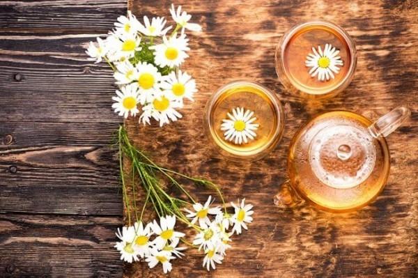 Kräuter gegen Husten Kamillenblüten Heilmittel gegen Husten
