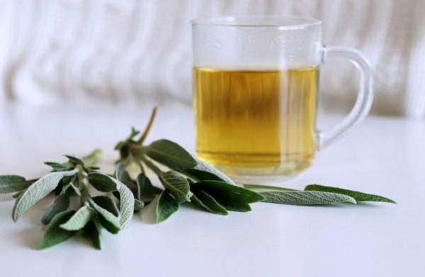 Kräuter gegen Husten Salbeitee bei Halsschmerzen und Husten trinken