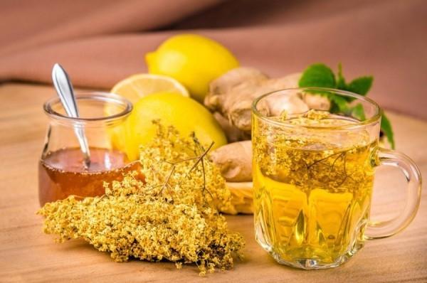 Kräuter gegen Husten frische Holunderblüten hustenlösenden Tee zubereiten