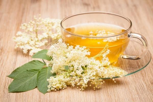 Kräuter gegen Husten weiße Holunderblüten heilenden aromatischen Tee zubereiten