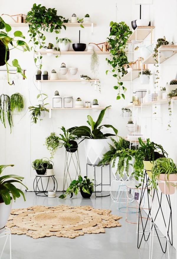 Natur ins Haus holen grüne Ecke viele Grünpflanzen gekonnt arrangiert