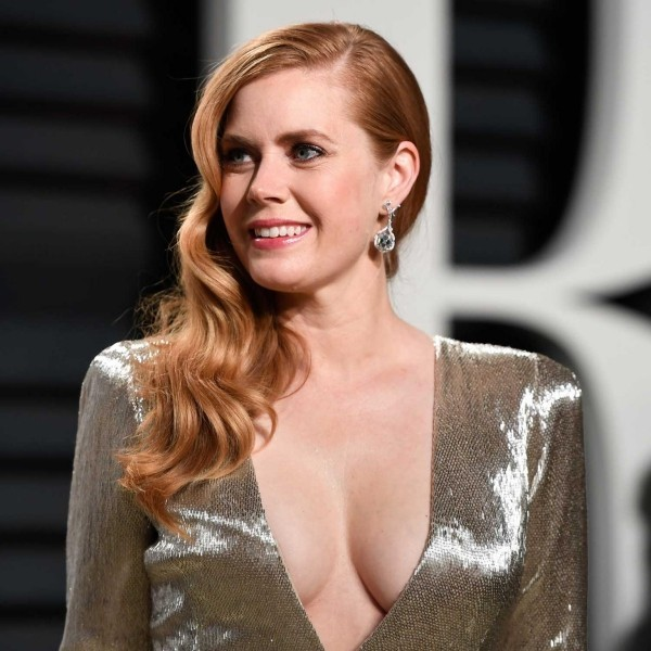Oscars 2019 für einen Film amy adams