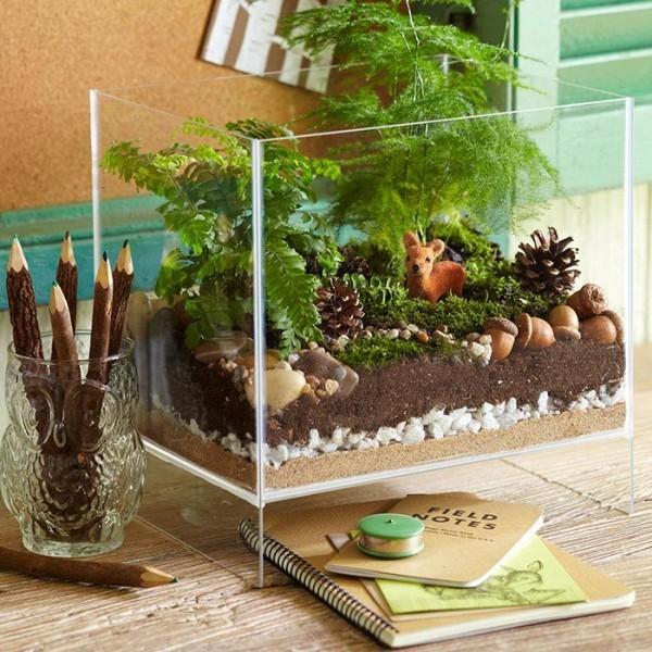 Terrarium Kies kleine Steine durchlässige Grundlage für Pflanzen