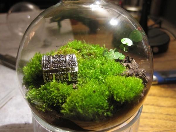 Terrarium kleine Schatzkammer als Schmuck