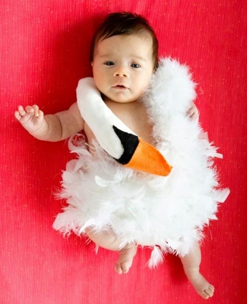 baby karneval kostüm schwan