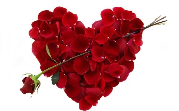 prachtvolles herz valentinstag ideen