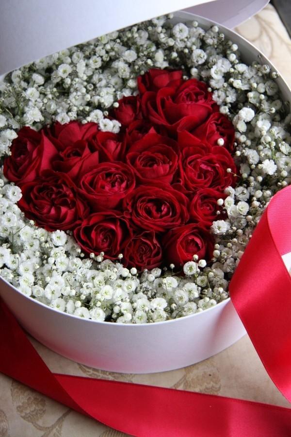 rot weiße schönheit valentinstag ideen